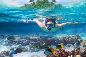 Snorkeling at Apo Island - Negros Oriental